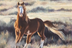 Hold-Your-Horses_7x5-Web