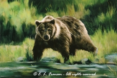Bearly Steppin